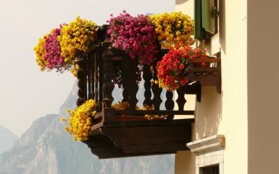 urbaner gartenbau urban gardening die gr ne revolution trends2move de. Black Bedroom Furniture Sets. Home Design Ideas
